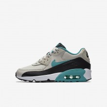 Nike Air Max 90 Lifestyle Shoes Boys Light Bone/Black/White/Sport Turquoise 833412-019