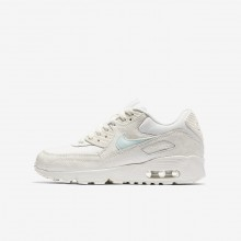 Nike Air Max 90 Mesh Lifestyle Shoes Girls Sail/Igloo 833340-107